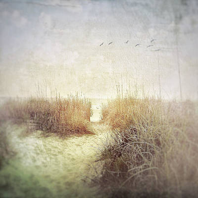 Photograph - Lazy Day At The Beach by Melissa D Johnston