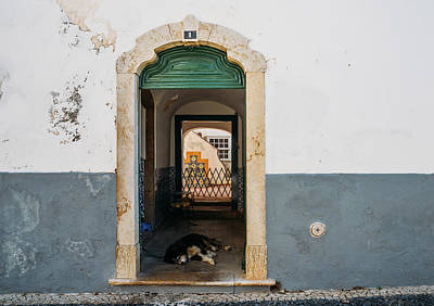 Photograph - Lazy Dog At Rustic Doorway In Faro, Portugal by Alexandre Rotenberg