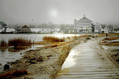 Photograph - Lazy Harbor by Diana Angstadt