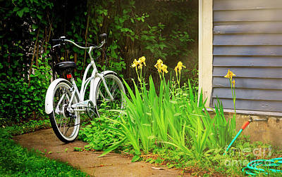 Photograph - Lazy Summer Bicycle by Craig J Satterlee