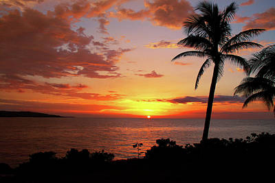 Palm Tree Photograph - Lazy Sunset by Kamil Swiatek