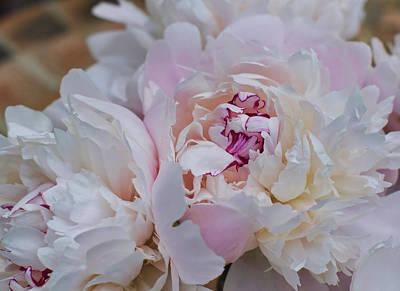 Photograph - Le Bouquet by JAMART Photography