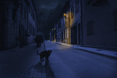 Composite Photograph - Le Chat Noir by Omar Brunt