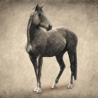 Animals Drawings - Le Cheval by Zapista OU