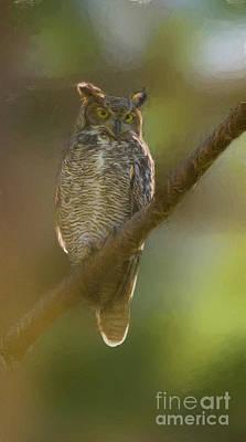 Digital Art - Le Owl by Jim Hatch