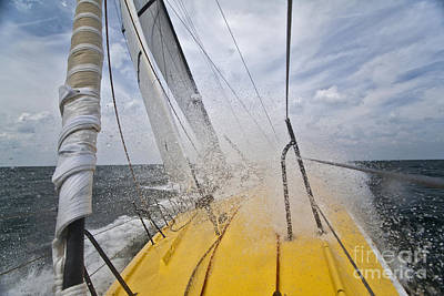 Sailboat Photograph - Le Pingouin Charging Upwind by Dustin K Ryan
