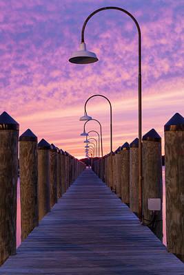 Photograph - Lead The Way by Nicole Robinson