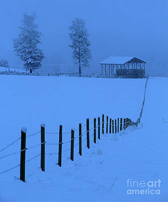 Photograph - Leading Into Hay Barn by Roland Stanke