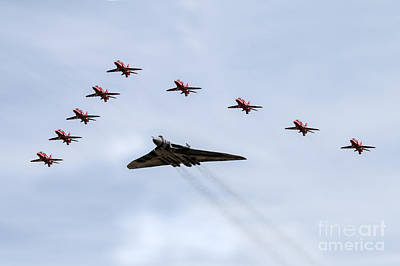 Garden Fruits - Leading XH558 by Airpower Art
