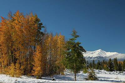 Photograph - Leadville Autumn Views by James BO Insogna