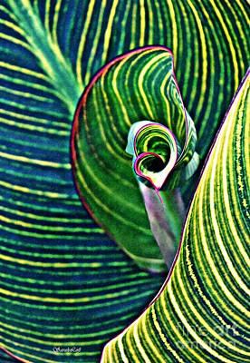 Photograph - Leaf Abstract 5 by Sarah Loft
