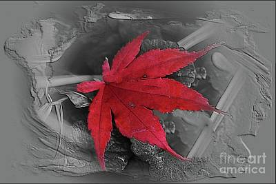 Photograph - Leaf Abstract  by Yumi Johnson