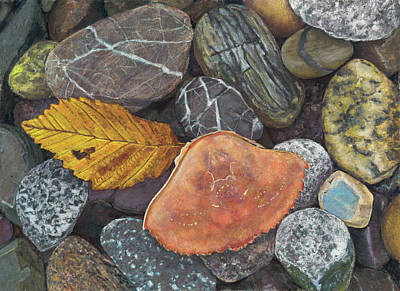 Painting - Leaf And Crab Shell by Nick Payne