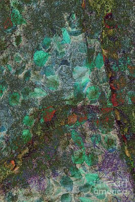 Photograph - Leaf And Rock Composite 3 by Elaine Teague