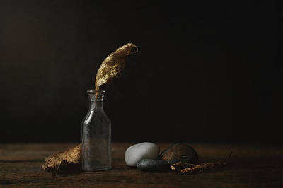 Whimsically Poetic Photographs - Leaf Bottle Rocks by Scott Norris