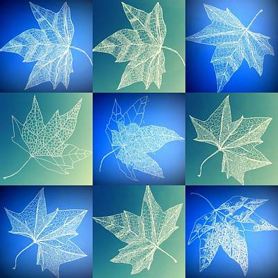 Tree Of Life Drawing - Leaf Collage In Turquoise And Aqua by Cathy Jacobs