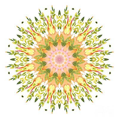 Digital Art - Leaf Nouveau by Mary Machare