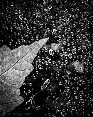 Photograph - Leaf On Raindrops by Henri Irizarri