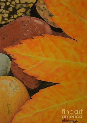 Leaf Over Rocks Art Print