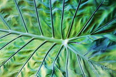 Leaf Pattern Art Print by Teresa Zieba