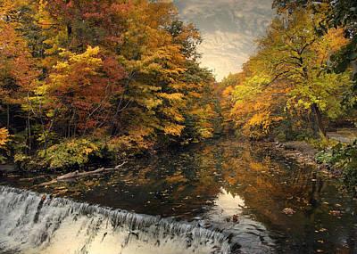 Autumn Foliage Photograph - Leaf Peeping by Jessica Jenney