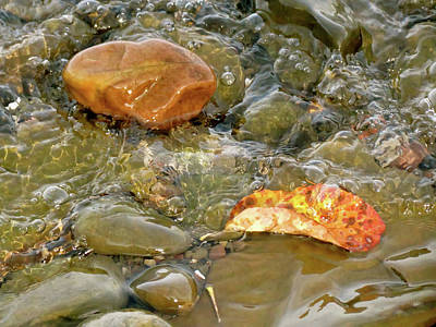Photograph - Leaf, Rock Leaf by Azthet Photography
