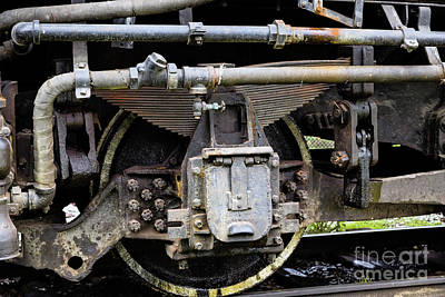Photograph - Leaf Springs by Jon Burch Photography