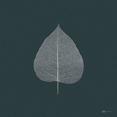 Digital Art - Leaf Veins Skeleton - Leaf Structure In Silver On Dark Slate Gray  by Serge Averbukh