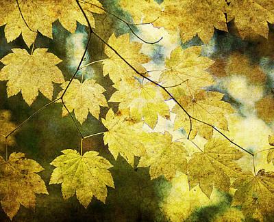 Leaf Zen T Art Print by Rebecca Cozart