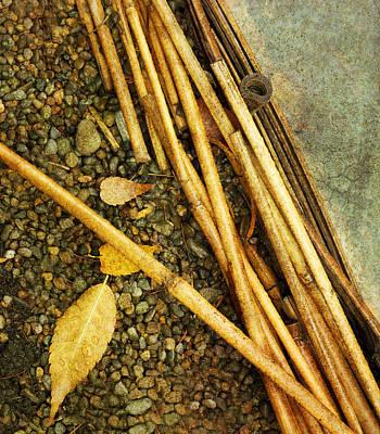 Photograph - Leaf Zen U by Rebecca Cozart