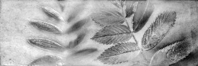 Mixed Media - Leafage Lustre by Roseanne Jones