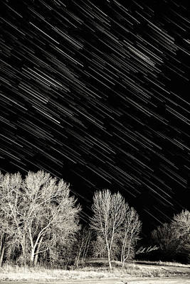 Photograph - Leafless Trees And Star Trails by Bill Kesler