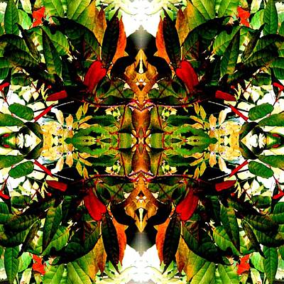 Photograph - Leafy Kaleidoscope 1 by Marianne Dow