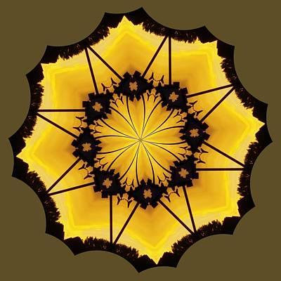 Photograph - Leafy Kaleidoscope 2 by Lori Kingston