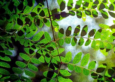 Photograph - Leafy Textures by Stephanie Maatta Smith