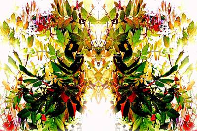 Photograph - Leafy Wings by Marianne Dow