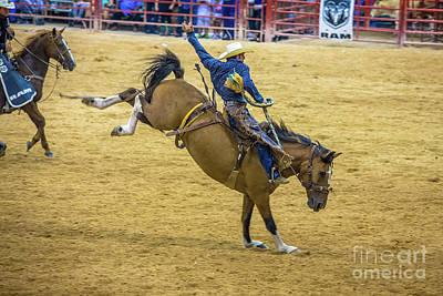 Photograph - Lean Back An Hold On Cowboy by Rene Triay Photography