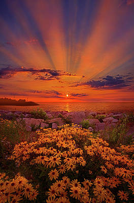Photograph - Lean Not On Your Own Understanding by Phil Koch
