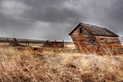 Photograph - Lean To by Michele Richter