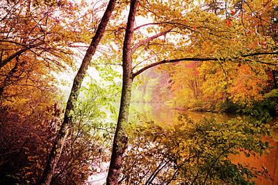 Photograph - Leaning Into Autumn by Debra and Dave Vanderlaan