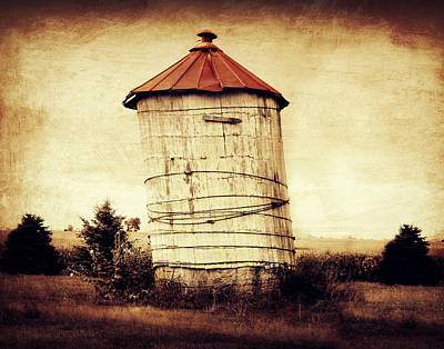 Country Chic Photograph - Leaning Tower by Julie Hamilton