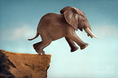 Predicament Photograph - Leap Of Faith Concept Elephant Jumping Into A Void by Lee Avison