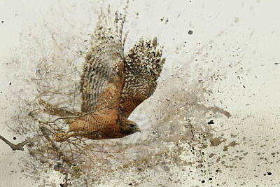 Leap Of Faith Wildlife Art Art Print