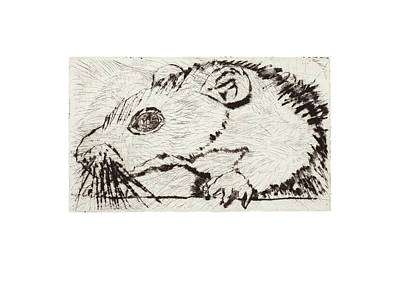 Mixed Media - Learning To Love Rats More #4 by Dawn Boswell Burke