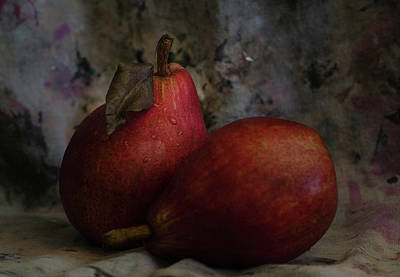 Photograph -  Leave - The Pear Saga by Rae Ann  M Garrett