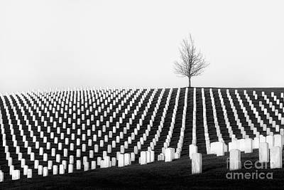 Photograph -  Leavenworth National Cemetery  by Lisa Plymell