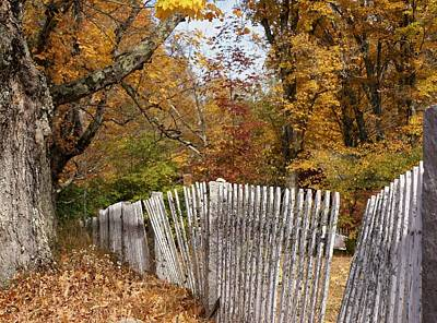 Leaves Along The Fence Art Print