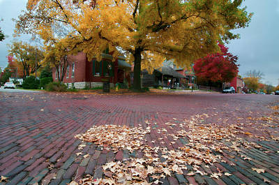Photograph - Leaves And Cobblestone by Steve Stuller