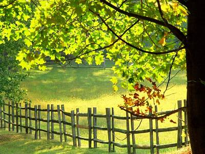 Leaves And Fence Art Print