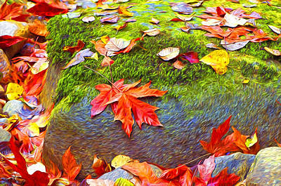 Photograph - Leaves And Moss Digital Art by Sharon Talson